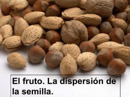 El fruto. Dispersión y germinación de las semillas