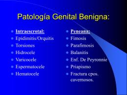 Patología Genital Benigna: