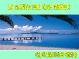 DIAPOSITIVAS LA MANGA - Carlos Fabian Montes Fernandez