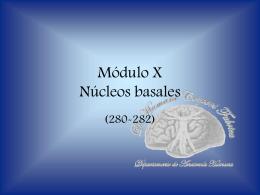 Núcleos basales