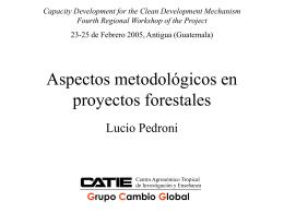 Aspectos metodologicos en proyectos forestales