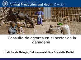 Consulta de interesados/actores en el sector de la ganadería