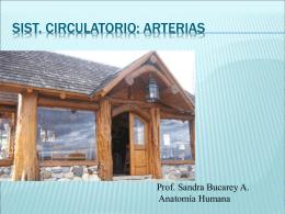 Arterias122-2010