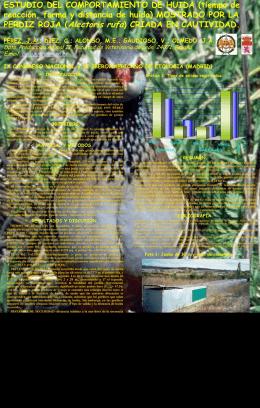 Estudio del comportamiento de huida mostrado por la perdiz roja