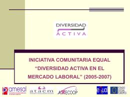 proyecto iniciativa comunitaria equal