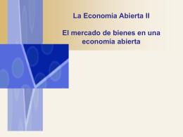 La Economía Abierta II
