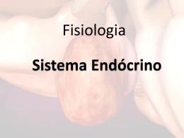 sistema endócrino_1