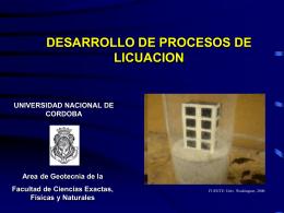 desarrollo de procesos de licuacion