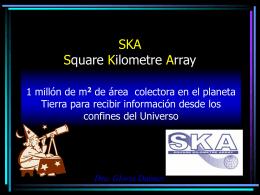 SKA Square Kilometre Array - Instituto Argentino de Radioastronomía