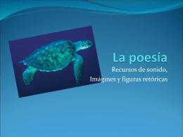 La poesía y la tortuga