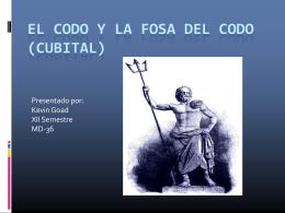 Fosa del Codo (Cubital)
