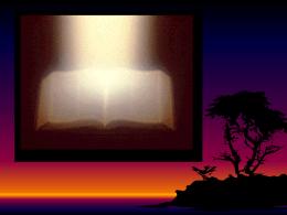 Crecimiento de la Iglesia Conforme a las Escrituras por Willie