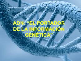 "adn: ""el portador de la información genética"""
