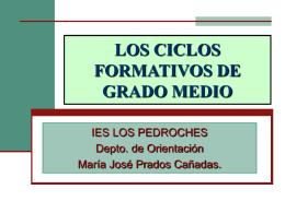 LOS CICLOS FORMATIVOS DE GRADO MEDIO
