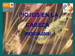 Presentación 1 Pediculosis