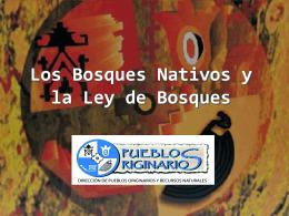 ¿Qué establece la Ley Nacional Nº 26331 sobre Bosques Nativos?
