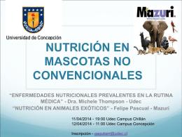 nutrición en mascotas no convencionales
