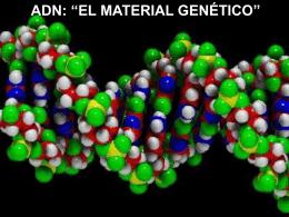 """adn: """"el material genético"""""""