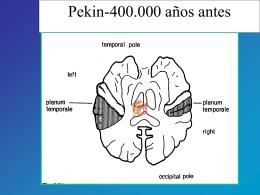 Problemas de lenguaje y habla en preescolares (Vecchi)