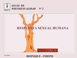 ciclo de respuesta sexual