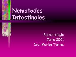 Nematodes Intestinales