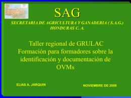 el Reglamento de Bioseguridad con énfasis en plantas transgénicas 2002