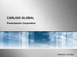 Metal Silver - carligo global