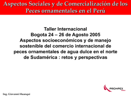 Perú: Exportación de peces ornamentales Ing. Giovanni Huanqui