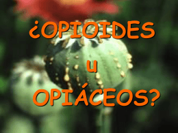 Farmacología de los Opioides