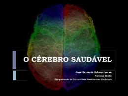 O Cérebro saudável - José Salomão Schwartzman
