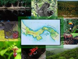 Evaluación Preliminar de la Vulnerabilidad de los Ecosistemas del