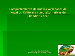 Comportamiento de nuevas variedades de Nogal en USA
