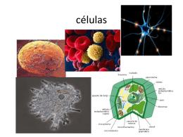 células - campvs.cl
