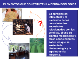 Presentación sobre deuda ecológica. Segunda parte (power