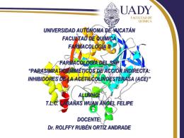 4a1207f45a55eInibidores_de_la_ACE