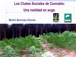 Los clubes sociales de cannabis: una realidad en auge