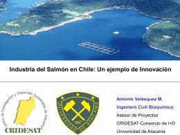 Presentación Industria de Salmonicultura - Metalurgia