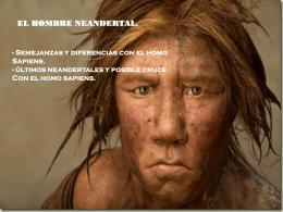 el Hombre de Neandertal - ies claudio sanchez albornoz