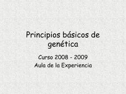 ppt - Universidad Pública de Navarra