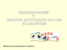 Eicosanoides-y-Factor-Activador