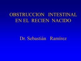 OBSTRUCCION INTESTINAL EN EL RECIEN NACIDO Dr