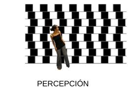 PERCEPCIÓN - Alarcosfilosofia