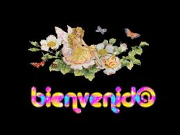 5comunica - San Luis Rey