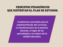 PRINCIPIOS PEDAGÓGICOS QUE SUSTENTAN EL PLAN DE