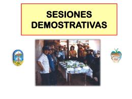 13 Sesiones Demostrativa