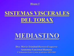 Sistemas viscerales de tórax