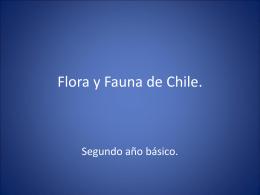 Flora y Fauna de Chile - Colegio Hispano Americano