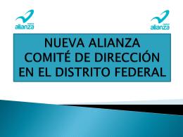 INFORME EJECUTIVO - Nueva Alianza