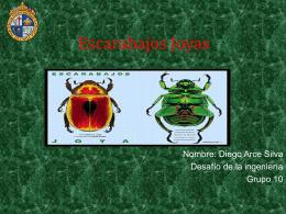 Escarabajos Joyas