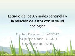 Estudio de los Animales centinela y la relación de estos con la salud